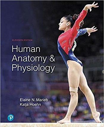Human Anatomy & Physiology 11th Edition eTextbook by Elaine N. Marieb, Katja N. Hoehn