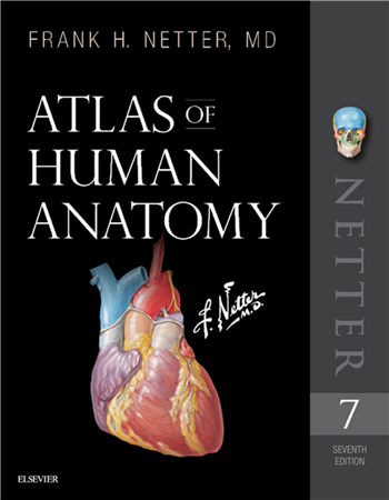 Atlas of Human Anatomy, 7th Edition eTextbook by Frank H. Netter, MD