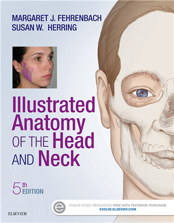 Illustrated Anatomy of the Head and Neck 5th Edition eTextbook by Margaret Fehrenbach, Susan Herring