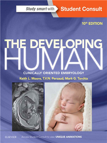 The Developing Human: Clinically Oriented Embryology 10th Edition eTextbook by Keith Moore, TVN Persaud, Mark Torchia