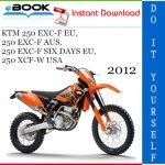2012 KTM 250 EXC-F EU, 250 EXC-F AUS, 250 EXC-F SIX DAYS EU, 250 XCF-W USA Motorcycle Service Repair Manual