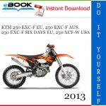 2013 KTM 250 EXC-F EU, 250 EXC-F AUS, 250 EXC-F SIX DAYS EU, 250 XCF-W USA Motorcycle Service Repair Manual