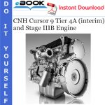 CNH Cursor 9 Tier 4A (interim) and Stage IIIB Engine Service Repair Manual