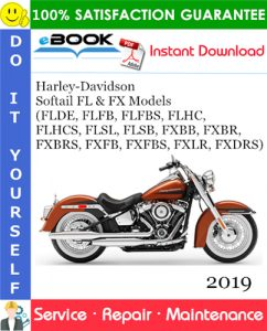 2019 Harley-Davidson Softail FL & FX Models